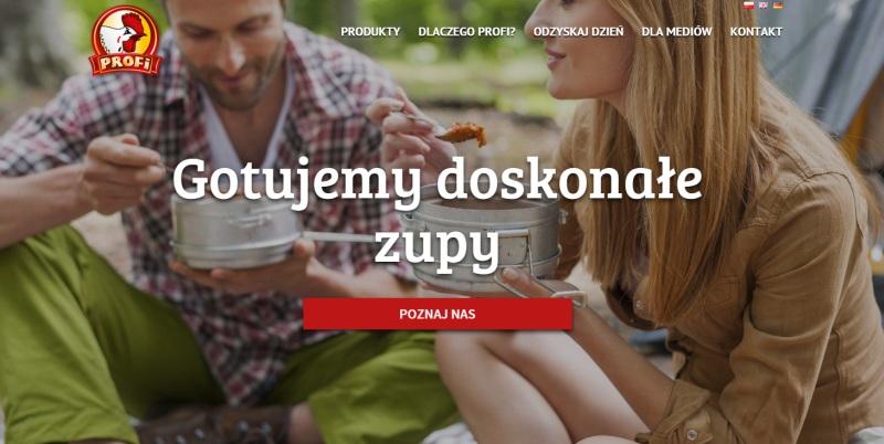 Nowa strona internetowa firmy Profi